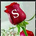 suiya